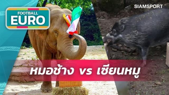 หมอช้างVSเซียนหมู!